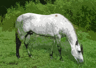 Painting - Stallion Grazing by George Pedro