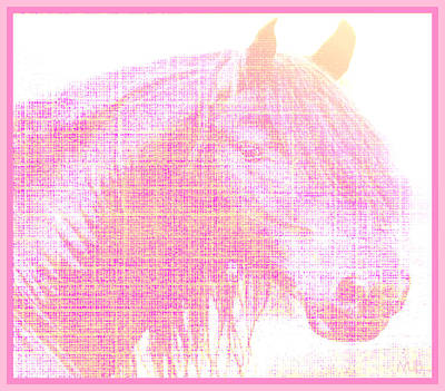 Photograph - Stallion In Pink  by Mindy Bench