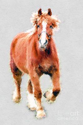 Stallion Portrait Art Print by Dan Friend