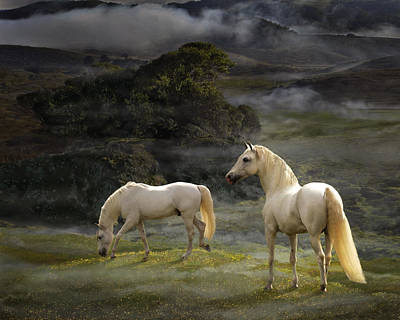 Photograph - Stallions Of The Gods by Melinda Hughes-Berland