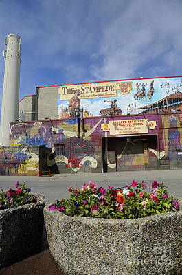 Photograph - Stampede Stadium In Calgary by Brenda Kean
