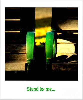 Park Benches Photograph - Stand By Me... by Susanne Van Hulst