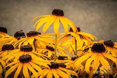 Photograph - Stand Out Above The Crowd by Grace Grogan