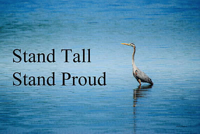Photograph - Stand Tall Stand Proud by Crystal Wightman