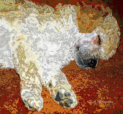 Doze Digital Art - Standard Poodle Puppy Dozing Off by A Gurmankin