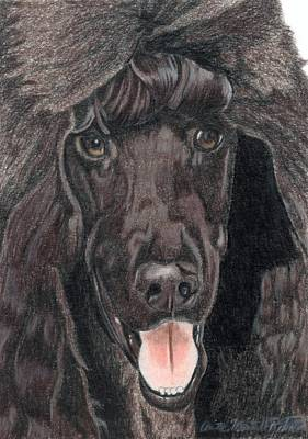 Standard Poodle Vignette Art Print by Anita Putman