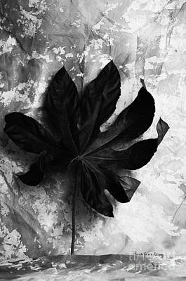 Photograph - Independent by Randi Grace Nilsberg