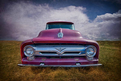 Purple V8 Photograph - Standing Proud by Elin Skov Vaeth