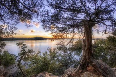 Photograph - Standing Sentinel - Arkansas - Cadron Settlement Park by Jason Politte
