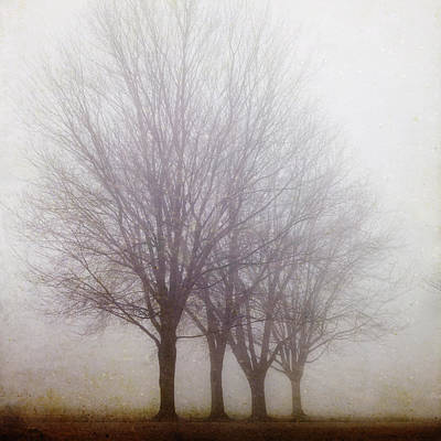 Photograph - Standing Still by Irene Suchocki