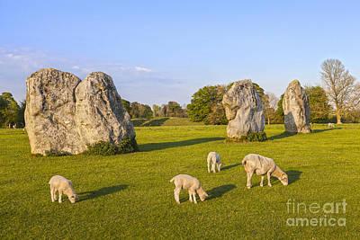 Standing Stones And Sheep Avebury Art Print