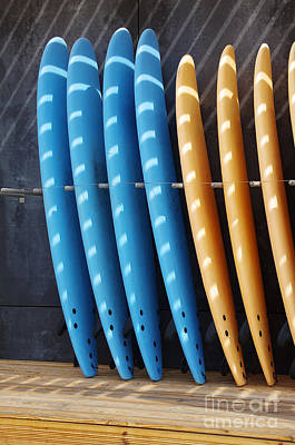Surf Photograph - Standing Surf Boards by Carlos Caetano