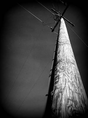 Photograph - Standing Tall by Michael Curry