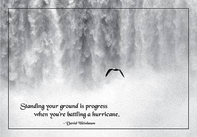 Standing Your Ground Print by Mike Flynn