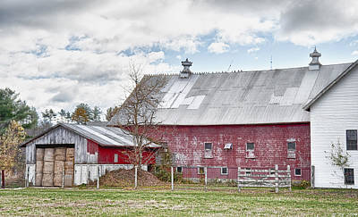 Maine Meadow Photograph - Stands With Dignity by Richard Bean