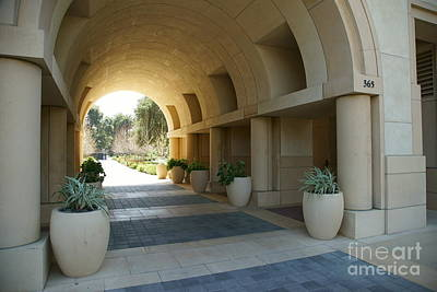 Photograph - Stanford University Palo Alto California Dsc667 by Wingsdomain Art and Photography