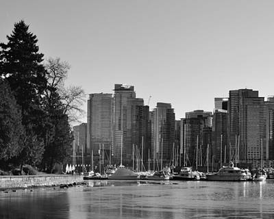 Vancouver Photograph - Stanley Park In Vancouver British Columbia by David Lobos