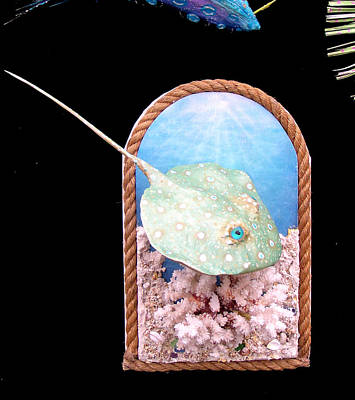 Mixed Media - Stanley The Sting Ray by Dan Townsend
