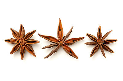Aniseed Photograph - Star Anise Fruits by Fabrizio Troiani