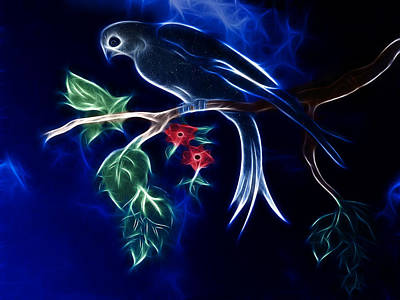 Dodo Digital Art - Star Bird by Carlos Vieira