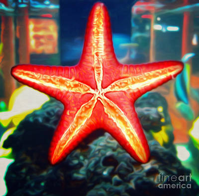 Photograph - Star Fish by Gregory Dyer