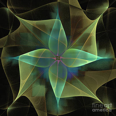 Star Flower Art Print by Ursula Freer
