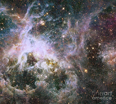 Star Formation In The Tarantula Nebula Art Print by Stocktrek Images