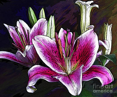 Stamen Digital Art - Star Lilies by Dorinda K Skains