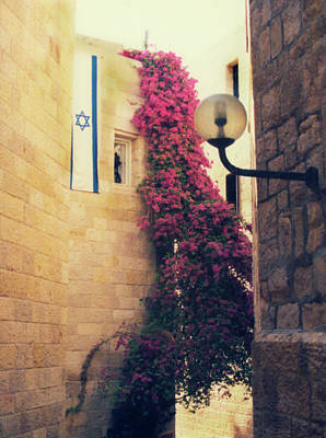 Star Of David Photograph - Star Of David Jerusalem by Kurt Van Wagner