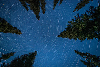 Photograph - Swirling Stars Over The Spruces by Roger Clifford