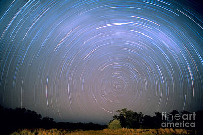 Startrails Photograph - Star Trails by Gregory G. Dimijian, M.D.