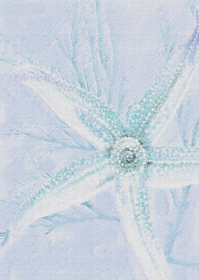 Digital Art - Starfish- Blue And Sand by Jane Schnetlage