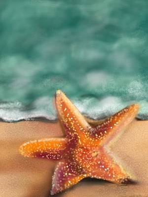 Starfish  Art Print by Christine Fournier