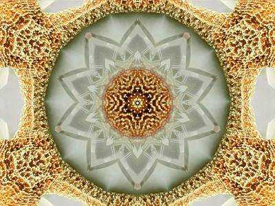 Digital Art - Starfish Crystal Mandala by Diane Lynn Hix