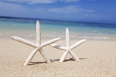 Starfish In Sand Print by Brandon Tabiolo