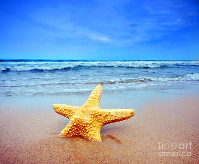 Starfish Photograph - Starfish On A Beach   by Michal Bednarek