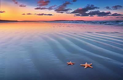 Starfish On Sand Art Print by Joe Regan