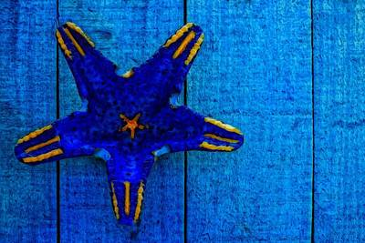 Starfish Shape On Blue Wooden Boards Art Print