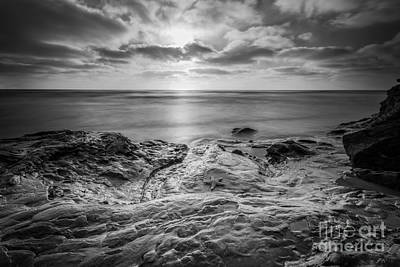 Starfish Sunset Bw Original by Michael Ver Sprill