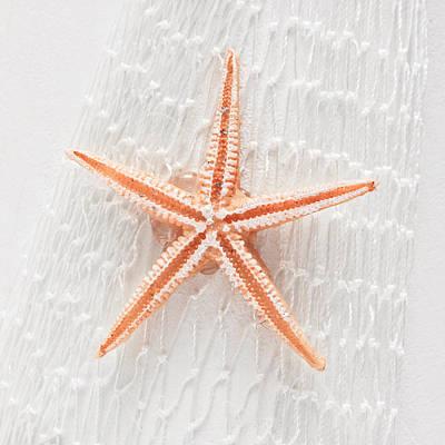Starfish Art Print by Tom Gowanlock