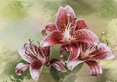 Stargazer Lilies Photograph - Stargazer Lilies by Diane Schuster