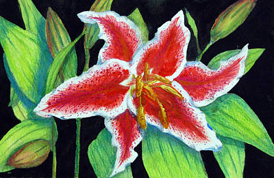 Painting - Stargazer Lily by Barbara J Blaisdell