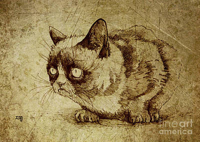 Illustration Drawing - Staring Cat by Daniel Yakubovich