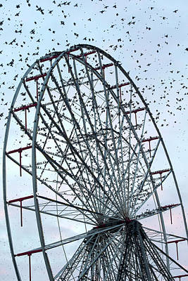 Starlings Wall Art - Photograph - Starling Flock On Blackpool Ferris Wheel by Simon Booth