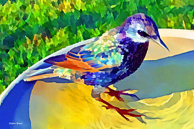 Starlings Digital Art - Starling by Stephen Younts