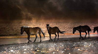 Starry Night Beach Horses Art Print by Betsy Knapp