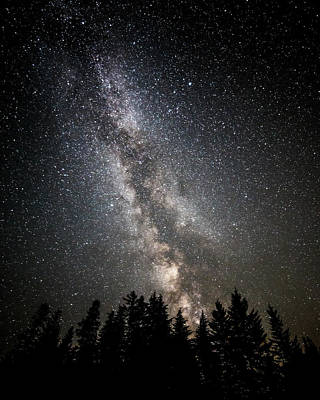 Photograph - Starry Night by Wes and Dotty Weber