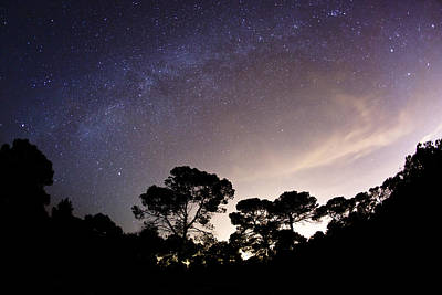 Starry Nights Art Print by Emilio Lopez