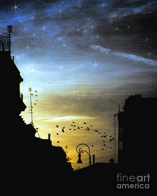 Photograph - Starry Night In Rome by Karen Lewis