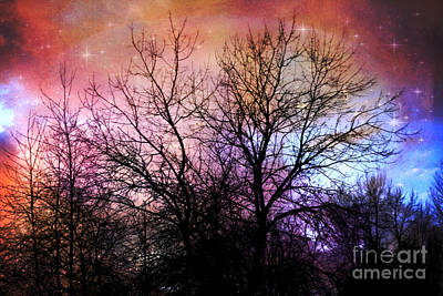 Print featuring the photograph Starry Night by Sylvia Cook
